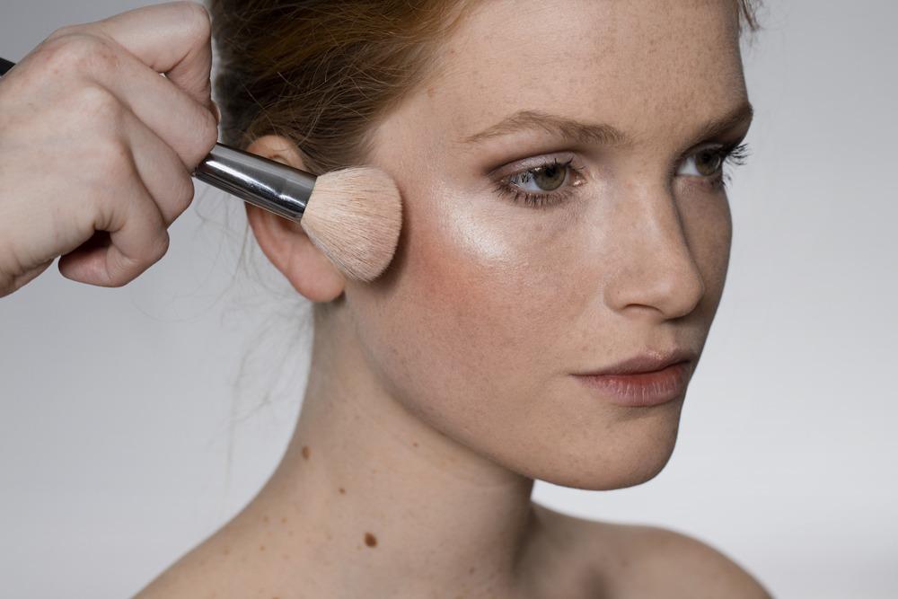Portfolio highlight and blush (makeup)